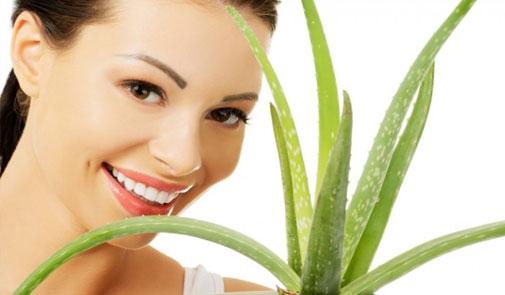 الصبار و فوائده المذهلة في علاج مشاكل الشعر والبشرة..